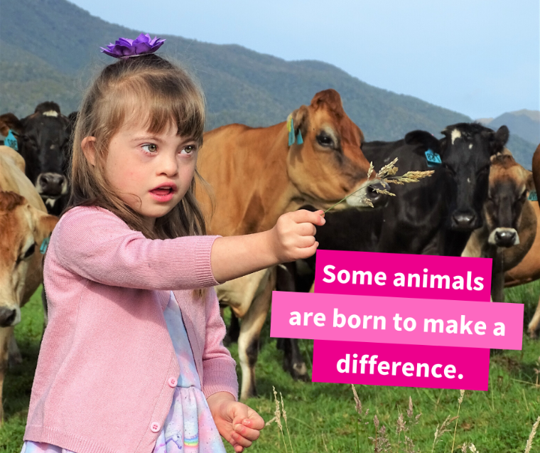 Down Syndrome Girl with Cows